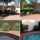 Reorganización y sustitución de plantaciones en jardín particular. Miami (USA), año 2016.