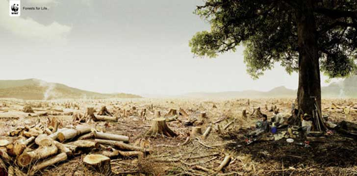 WWF-Ads-Tree