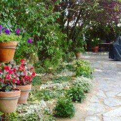 jardin pozuelo